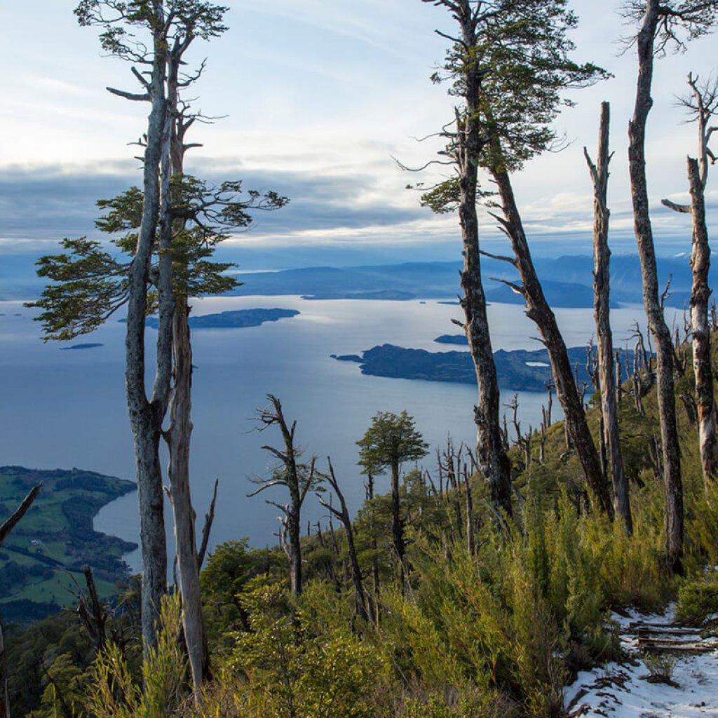 Vista desde el cerro Mayo en Parque Futangue