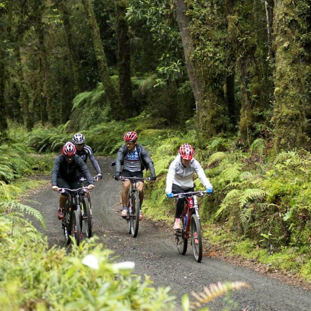 Excursión en mountain bike por los senderos de parque Futangue