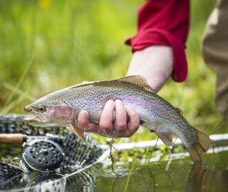 Fly Fishing Package <br> 3 Nights and 4 Days